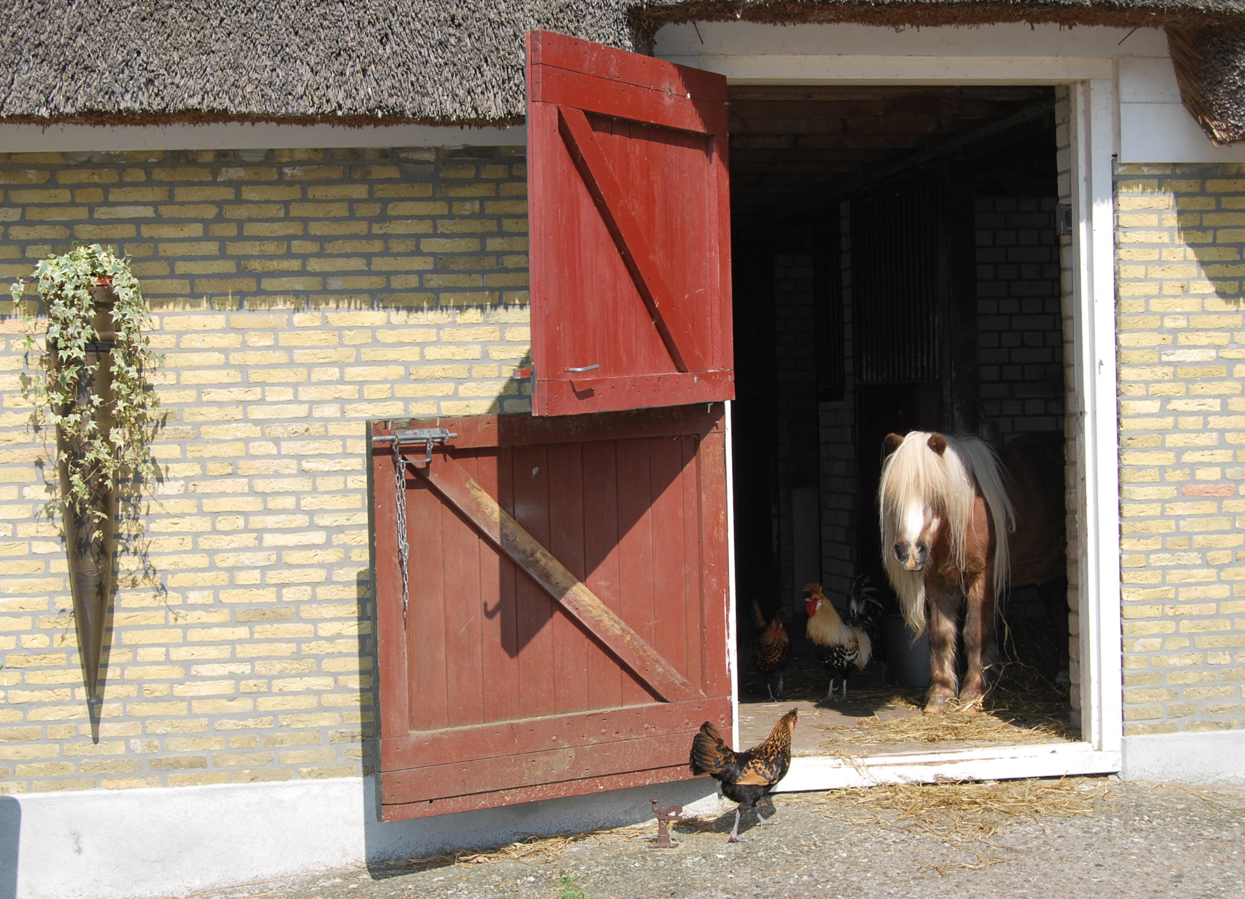 Stable Jaegersrust the Netherlands